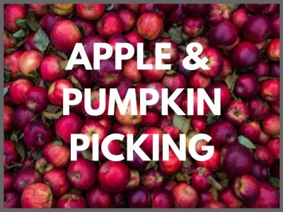 Apple & Pumpkin Picking